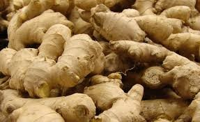 Health Facts - Ginger - Igor's Pastry news
